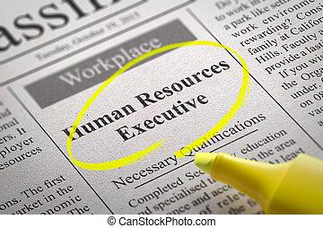 vacature, uitvoerend, middelen, menselijk, krant.