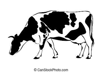 vache, silhouette