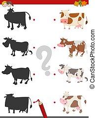 vaches, ombre, jeu, activité