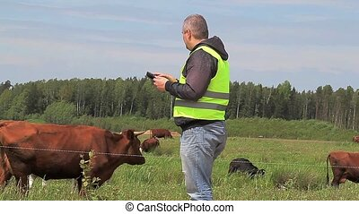 vaches, pc, tablette, paysan