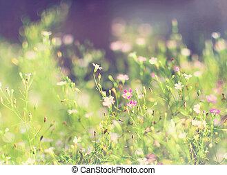 vacker, Årgång, stil, Blomstrar,  retro