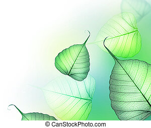 vacker, border., bladen, grön, blom formgivning