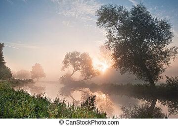 vacker, dimmig, soluppgång, landskap, över, flod, med, träd,...