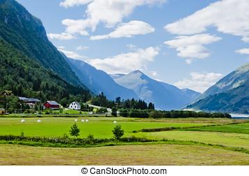vacker, fjäll, Norge, landskap