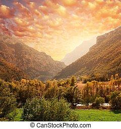 vacker, fjäll, sky., mot, skog, landskap