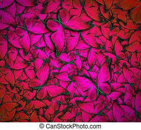 vacker, fjäril, bakgrund