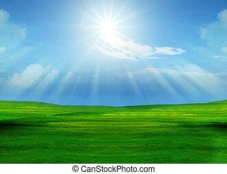 vacker, gräsfält, och, sol lysande, på, blåttsky