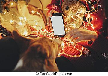 vacker, gyllene, visande, atmosfärisk, vinter, festlig, ögonblicken, avskärma, träd, hund, ringa, presenterar, lyse, room., annonsering, under, flicka, jul, tom, app.