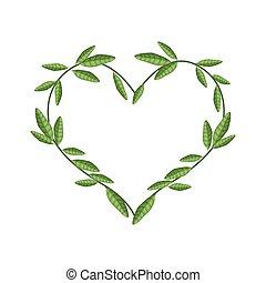 vacker, hjärta, bladen, vin, form, grön