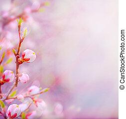 vacker, konst, fjäder, blomstrande, träd, bakgrund, sky
