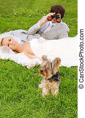 vacker, lögn, grass;, tröttsam, brudgum, hund, fokusera, kikare, brud, grön, dog;, ung, liten, genom, vit, se, klänning, man