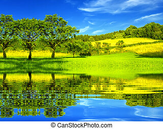 vacker, miljö, grön