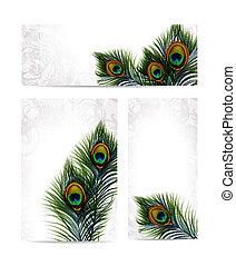 vacker, påfågel, sätta, 10, feathers., eps, vektor