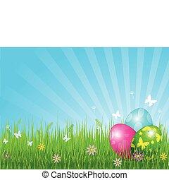 vacker, påsk eggar, bakgrund