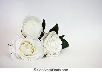 vacker, ro, mor, konstgjort, bakgrund., space., minimalistic, vit, avskrift, dag, firande