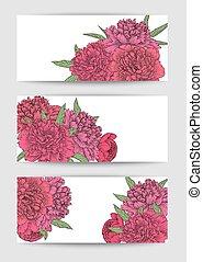 vacker, sätta, av, horisontella banér, med, flowers., hand-drawn, bakgrund, för, hälsning kort, och, inbjudningar
