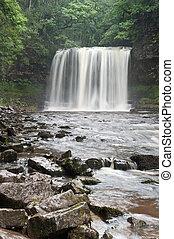 vacker, skogig, ström, och, vattenfall, in, sommar