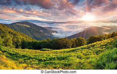 vacker, sommar, fjäll., landskap, soluppgång