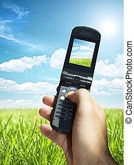 vacker, sommar, gjord, fält, mobil, foto, ringa, grön