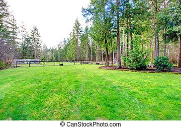 vacker, sommar, gräsmatta, utomhus, område, vila, grönt skog...