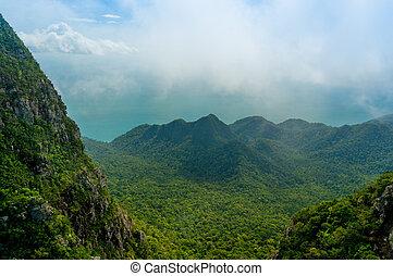 vacker, träd, höjande, mountains, in, langkawi, med, dimma, rullande