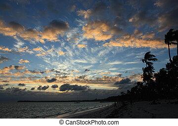 vacker, tropisk, solnedgång