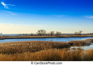 vacker, ukraina, flod, dnepr