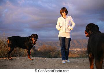 vacker, ung kvinna, gående hund