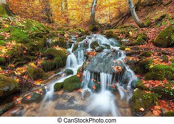 vacker, vattenfall, hos, fjäll, flod, in, färgrik, höst skog, med, röd, och, apelsin lämnar, hos, sunset.