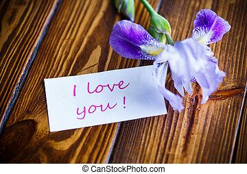 vacker, violett, iris, blomma