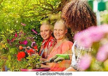 vackra flickor, trädgård, arbete, tre