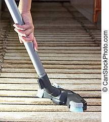 Vacuum cleaner - cleaning the house