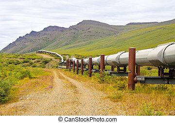 vad, csővezeték, alaszka
