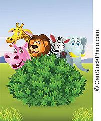 vad, furcsa, karikatúra, állat