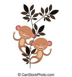 vad, párosít, dzsungel, majmok