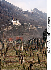 Vaduz castle and vineyard - Vaduz castle and the royal ...