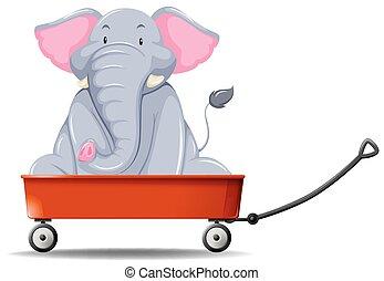 vagão, vermelho, elefante