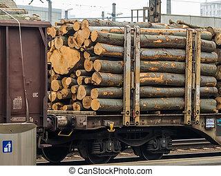 vagón, dřevo, naložený