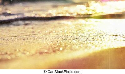vague, plage, irrigation, coucher soleil, macro