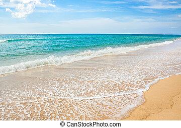 vague, sable plage, &, fond