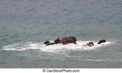 vagues, mer, rochers