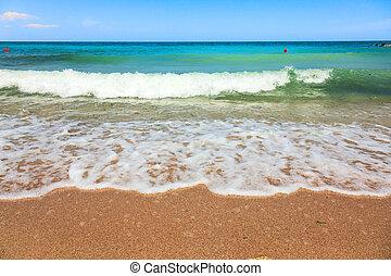 vagues, plage, mer, il