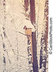 vagy, doboz, birdhouse, fészkelés