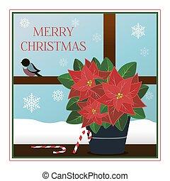 vagy, mikulásvirág, style., ablak, köszöntések, lakás, christmas reggel, csíkos, értékesítések, cukorka, köszönés, ads., ünnep, hópihe, kártya, plant., gyönyörű, ábra, bullfinches., poszter, jeges, élénk, háló, sétabot, kilátás, buli