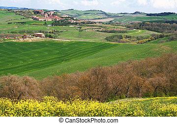 val, krajobraz., d'orcia, okolica, valley., italy., tuscany