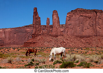 vale, paisagem, monumento