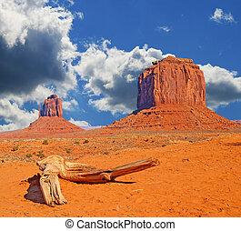vale, tribal, navajo, parque, monumento