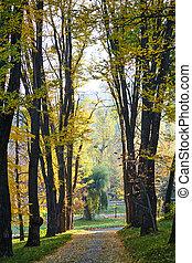 Valea Morilor park in autumn season