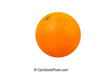 navel orange - valencia orange or navel orange with white...