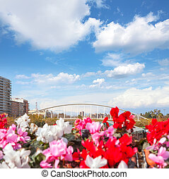 Valencia puente de Exposicion from city flowers bridge